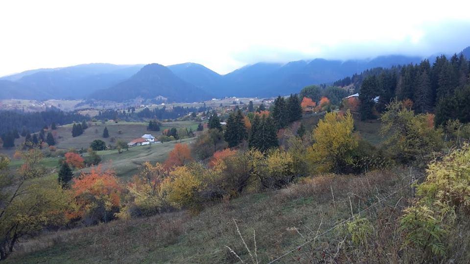 есен-в-село-гела