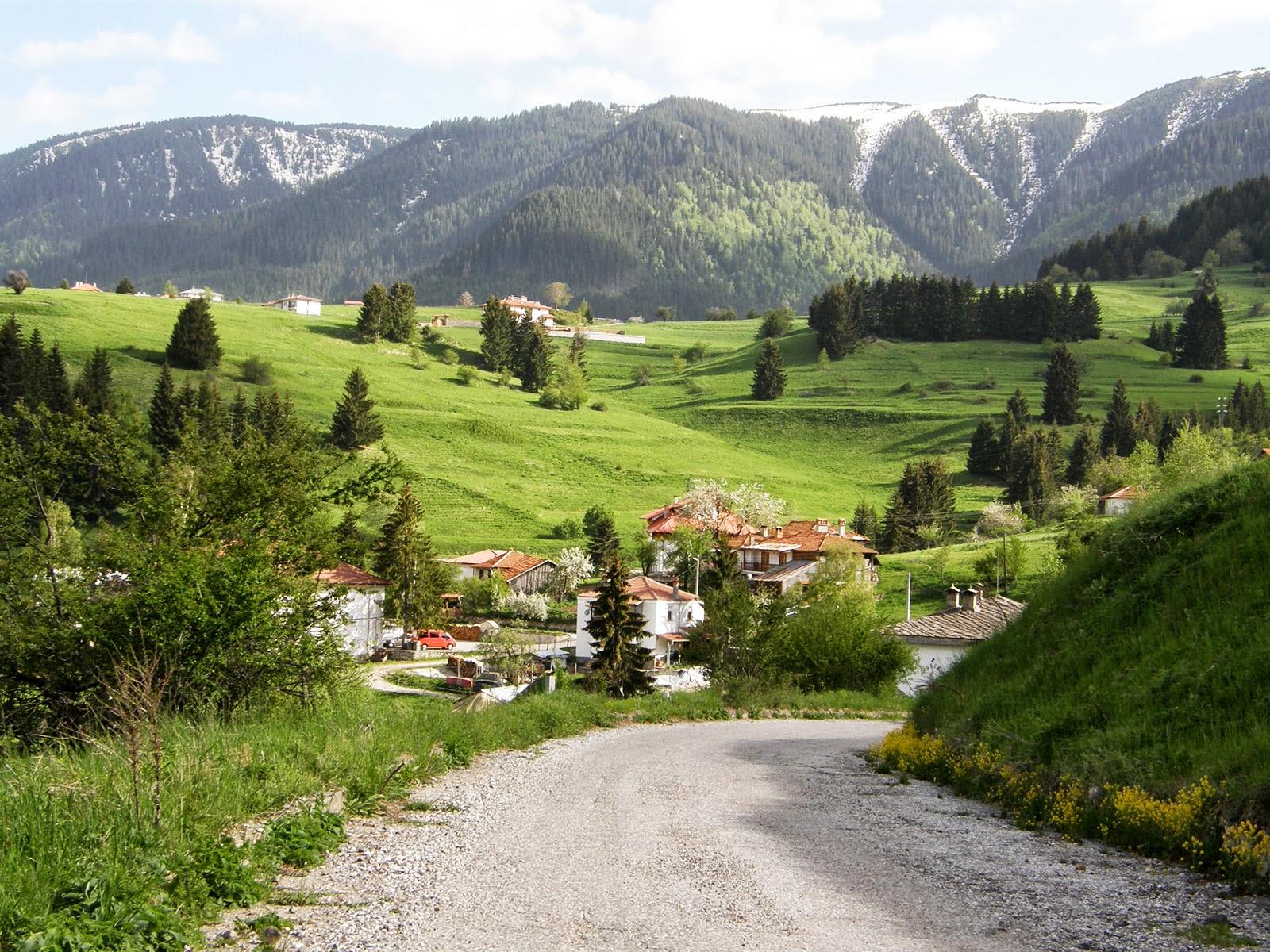 Хотели и къщи в село Гела