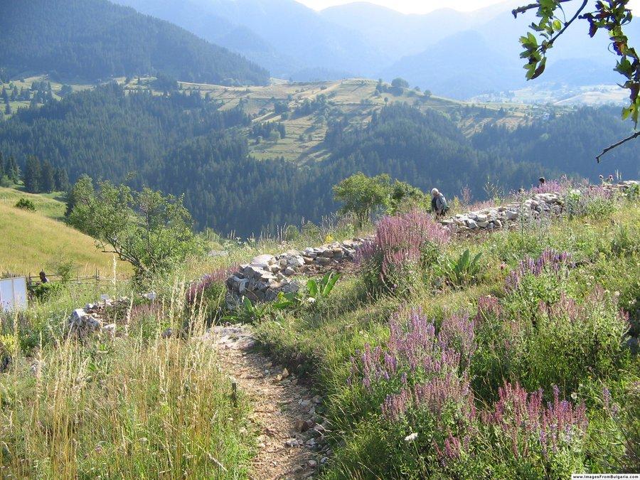 5 забележителности около село Гела, които трябва да посетиш