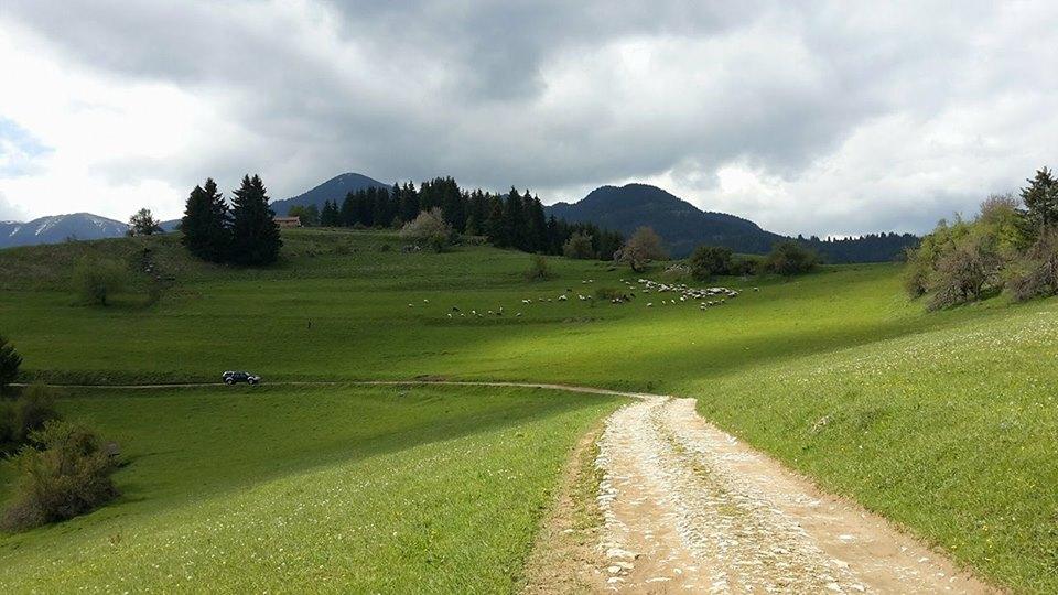 Почивка в село Гела през лятото