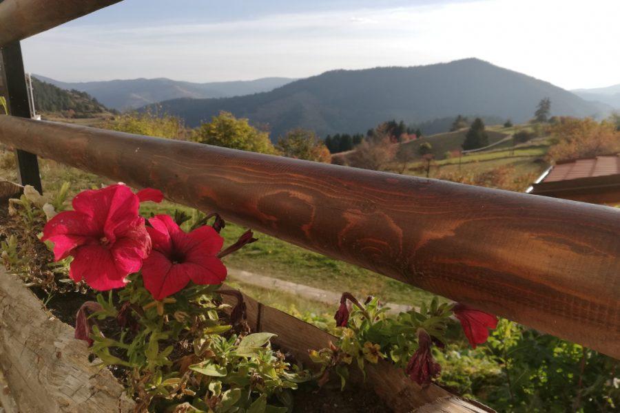 Гледка от терасата