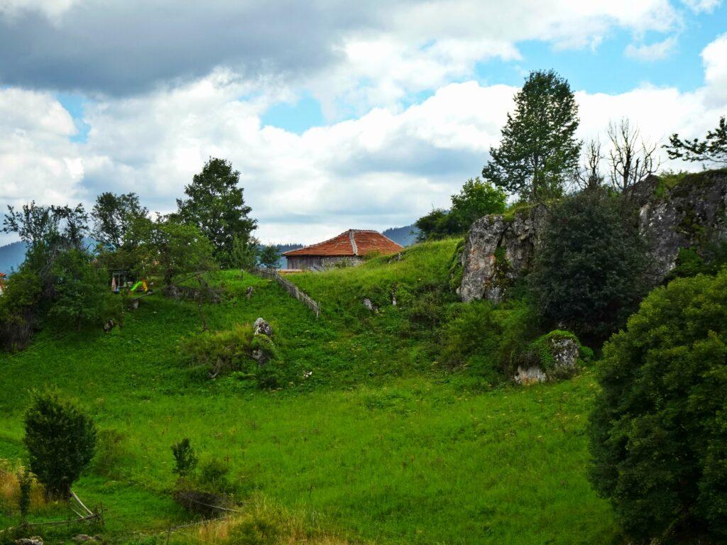 Гела, Панорама