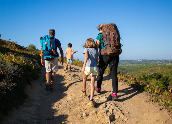Защо да прекарате лятната си почивка в Родопите?