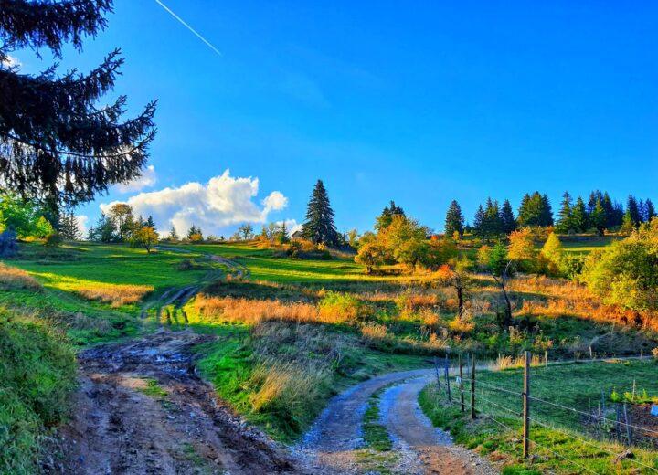 Как да прекарате 3 дни в района на село Гела?